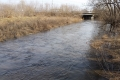 В Шадринске в реке Канаш нашли труп ребёнка
