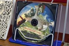 В читальном зале Центральной городской библиотеки имени Зырянова состоялась презентация аудиокниги «Шадринский гусь»