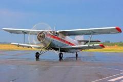 Малую авиацию планируют возродить в Курганской области