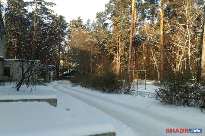 В Шадринск придёт резкое потепление после тридцатиградусных морозов