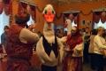 Гастрономический фестиваль «Шадринский гусь» в этом году пройдет в три этапа