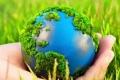 2017 год объявлен в России Годом экологии