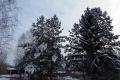 Сильных морозов в Шадринске на Крещение не предвидится