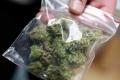 На станции Шадринск задержали молодого человека с сумкой марихуаны