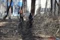 В апреле в Шадринске стартует месячник по благоустройству