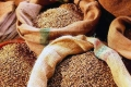 Со склада в Шадринском районе украли 350 килограммов зерна
