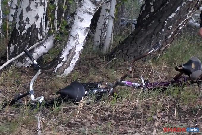 В Зауралье заблудившиеся дети провели ночь в лесу под проливным дождем