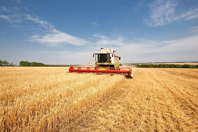 Сельхозтоваропроизводители Курганской области собрали два миллиона тонн зерна