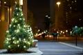 В Шадринске стартует конкурс на лучшее новогоднее оформление