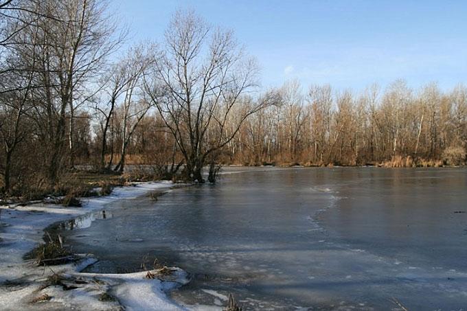 Спасая собаку, мальчик провалился под лед и утонул