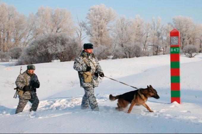 При попытке проникнуть на территорию РФ задержаны граждане Украины и Узбекистана