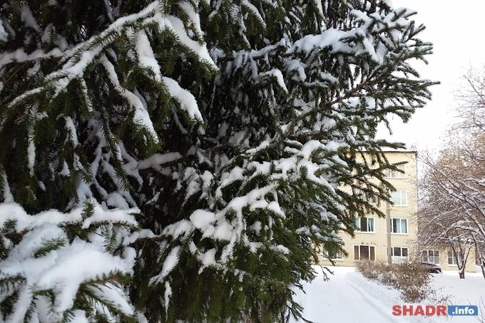 Погода выходных: морозы продолжаются