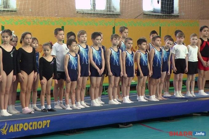 В Шадринске прошёл Кубок Курганской области по прыжкам на акробатической дорожке