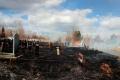 В Кургане в Родительский день горело кладбище