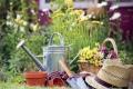 Пенсионеры-садоводы смогут получить проездные купоны по льготной цене