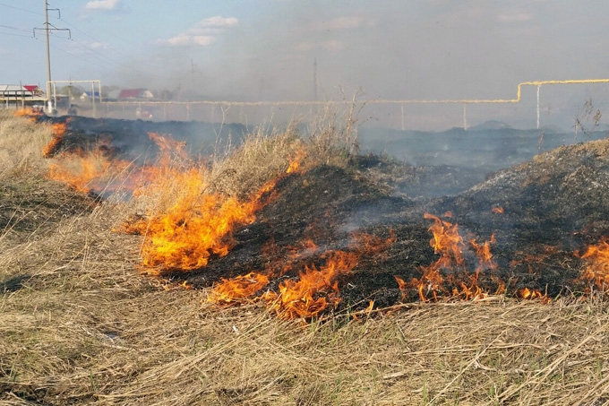 Алексей Кокорин поручил выплатить компенсации пострадавшим в пожарах