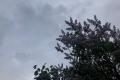 Погода новой недели: дожди и сильный ветер