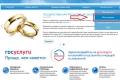 Замуж через интернет: в Зауралье зафиксирован рост подачи заявлений на регистрацию брака через портал госуслуг