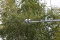 В Шадринске появятся камеры на перекрёстке улиц Володарского — Михайловская