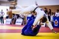 В Курганской области аккредитованы спортивные федерации по дзюдо и шахматам