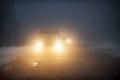 Госавтоинспекция Зауралья разыскивает очевидцев дорожно-транспортного происшествия