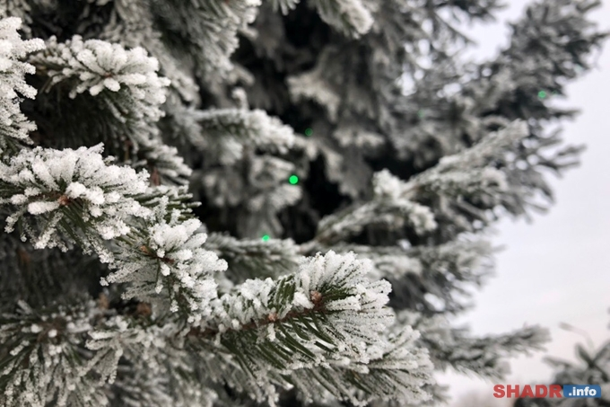 Погода новой недели: тридцатиградусные морозы
