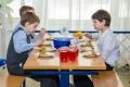 В Зауралье планируют ввести централизованную модель организации питания для школьников и студентов