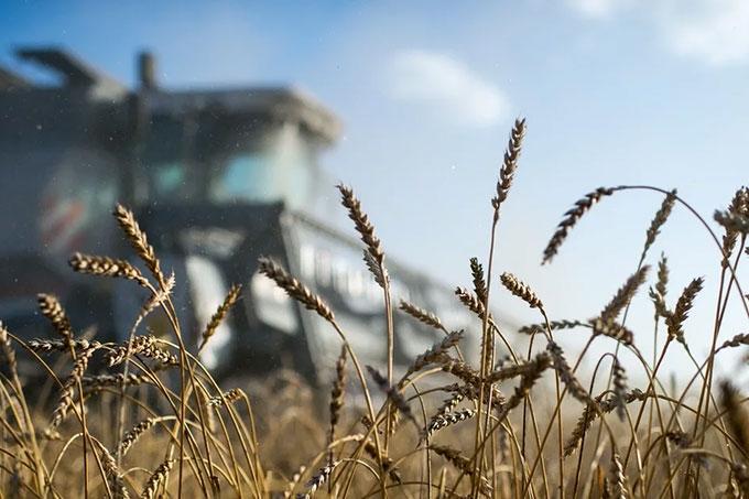 Сельхозтоваропроизводители Курганской области готовятся к посевной кампании