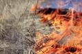 Пожароопасный сезон в Зауралье вводится с 15 апреля