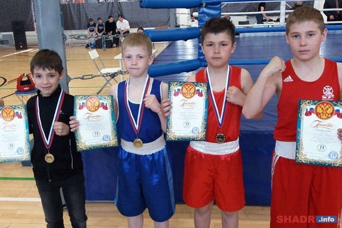 Шадринские боксёры достойно выступили на областных соревнованиях
