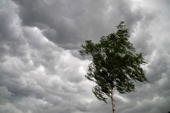 Объявлено штормовое предупреждение в связи с сильным ветром и грозой