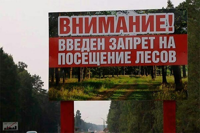В выходные дни, 13-14 июля посещение лесов запрещено