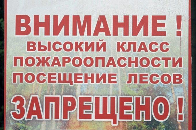 С 17 по 19 июля посещение лесов запрещено