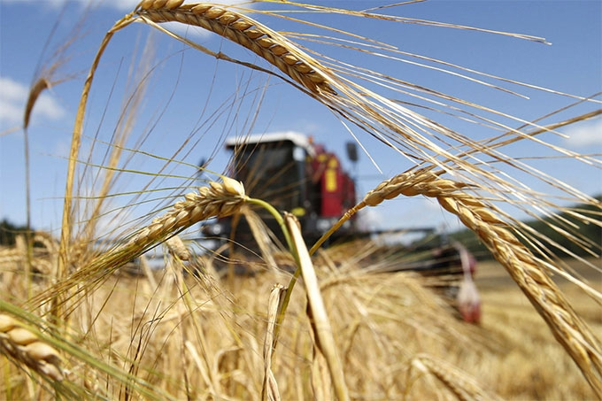 Сельхозтоваропроизводители Курганской области получили из федерального бюджета 476 млн рублей