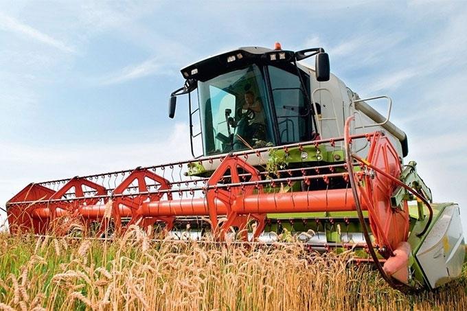 Шадринской район - лидер по урожайности зерна