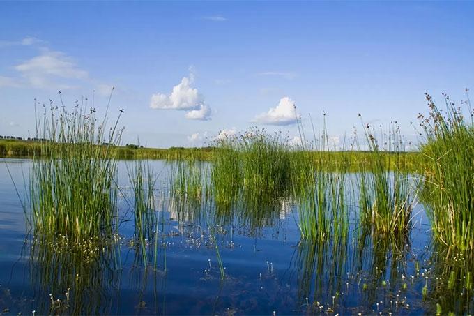 На озере Большое Тетерье в Курганской области утонули два подростка