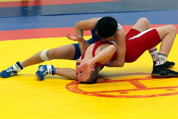 IX традиционный турнир по греко-римской борьбе на призы Шадринских борцов стал рекордным