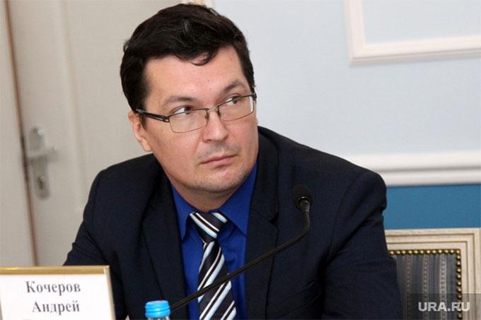 Андрей Кочеров назначен на должность директора Департамента образования и науки Курганской области