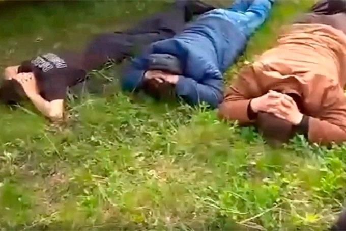 Жители Челябинска пытались украсть 27 голов крупного рогатого скота