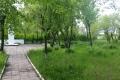 Стартовала работа по организации скейт-парка в Шадринске