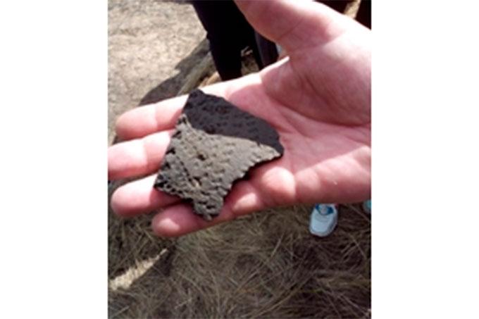 Археологи нашли на территории Курганской области уникальные предметы эпохи энеолита