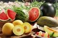 Как выбрать спелый арбуз и дыню