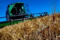 11 октября — День работника сельского хозяйства и перерабатывающей промышленности
