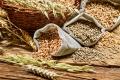 Продукция агропромышленного комплекса Курганской области поставляется в 25 стран мира