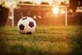 Торпедо-Шадринск: первые игры сезона 2021