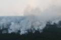 Причина задымления в Шадринске – лесной пожар