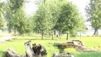 Шадринск, которого нет (выпуск 1) - Городской сад