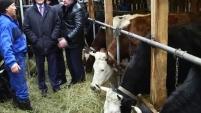 Губернатор посетил крестьянско-фермерские хозяйства области