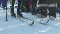 В Шадринске прошли областные соревнования по лыжным гонкам