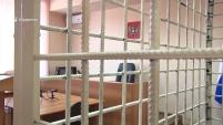 Жительница Шадринска осуждена за убийство трехлетнего ребенка